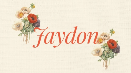 Uncommon spellings of baby names Jaydon