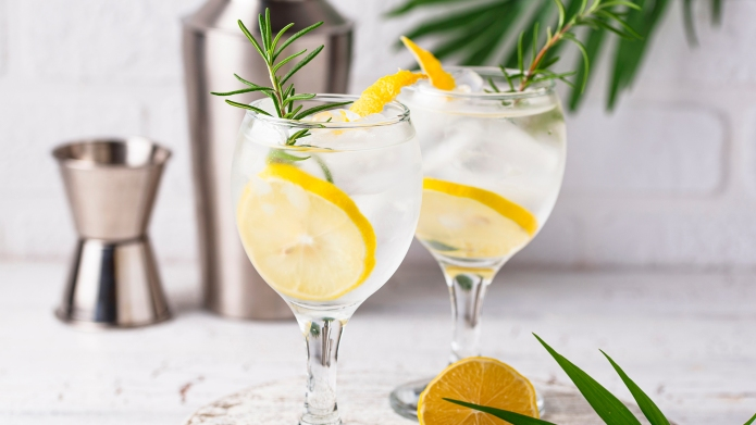 Gin tonic cocktail with ice and