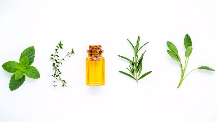 Herbs and essential oil