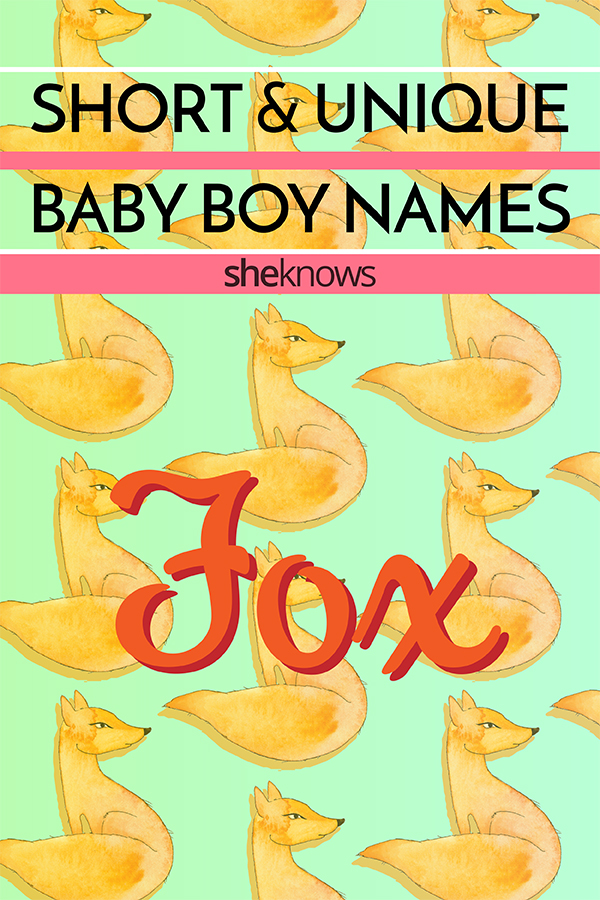 short and unique baby boy names
