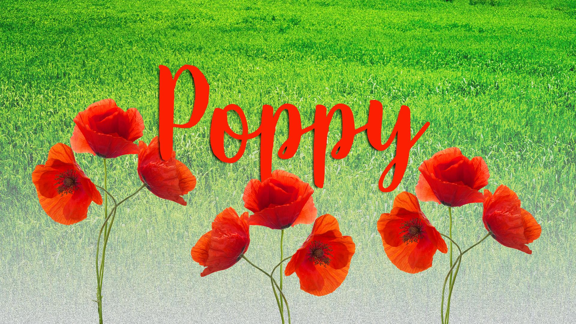 baby names 2020 Poppy