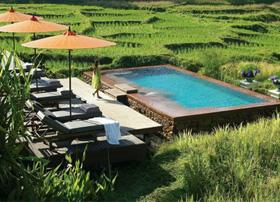 Pool at the Four Seasons Resort Chiang Mai