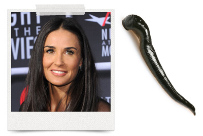 Demi Moore relies on leeches for youthful skin