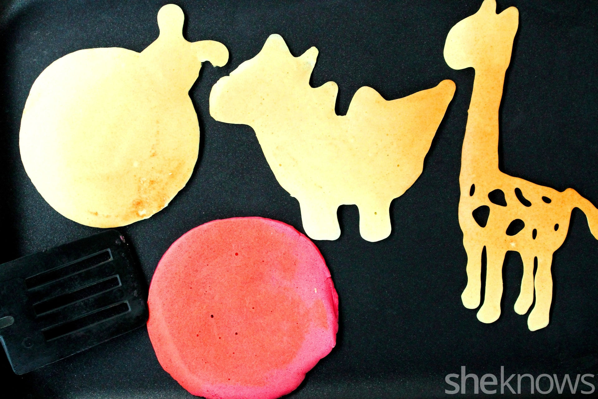 Cooked-pancake-shapes