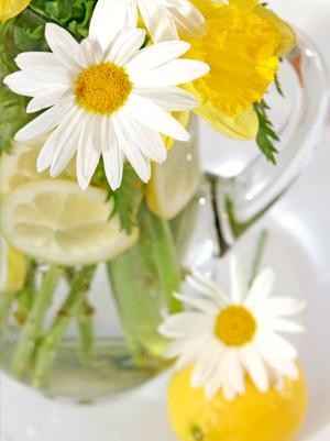 Lemon and daisy vase