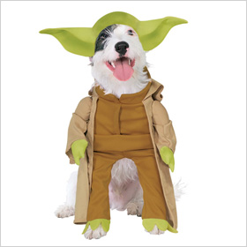 PetSmart Yoda costume for dog