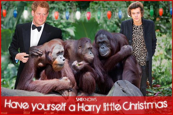 Prince Harry Christmas card
