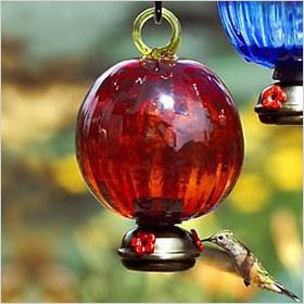 Red Ruffle Hummingbird Feeder