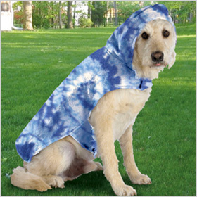 Snuggie...for your dog