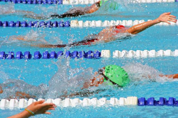 Backstroke swimmers