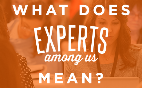 WHAT DOES EXPERTS AMONG US MEAN ART