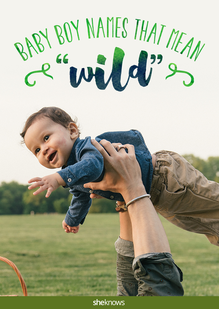 Beautiful baby names for boys that mean 'wild' – SheKnows