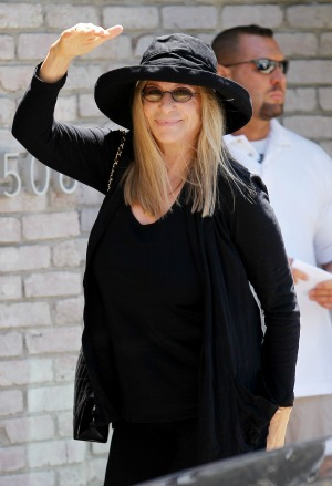 Barbra Streisand Brooklyn concert