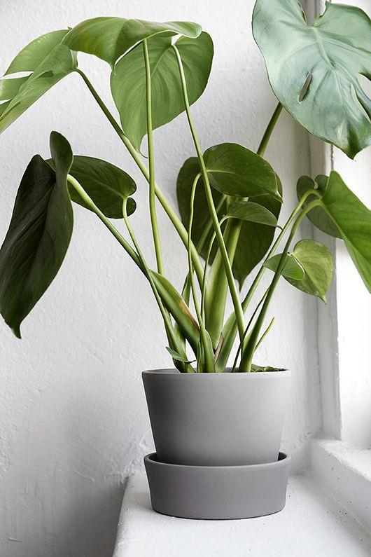 Best Ikea Hacks: Painted Ingefara planter