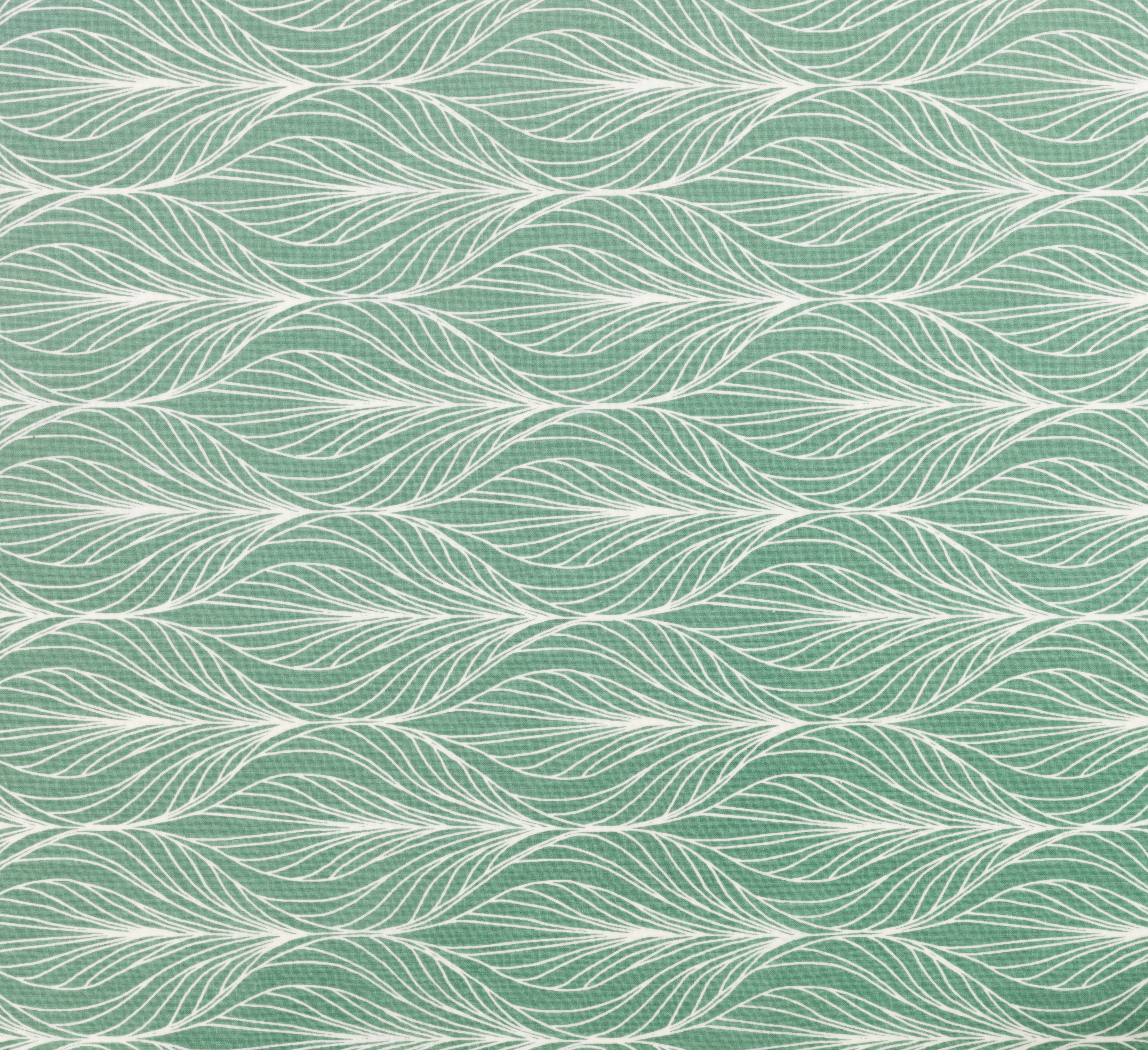 feather-oilcloth