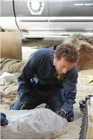Hodgins examines the Pod Man in Bones