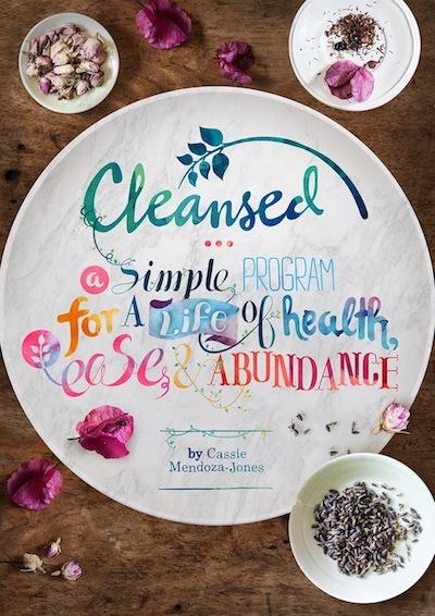 Cassie Mendoza-Jones Cleansed book