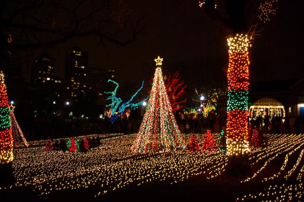 chicago-zoo-lights