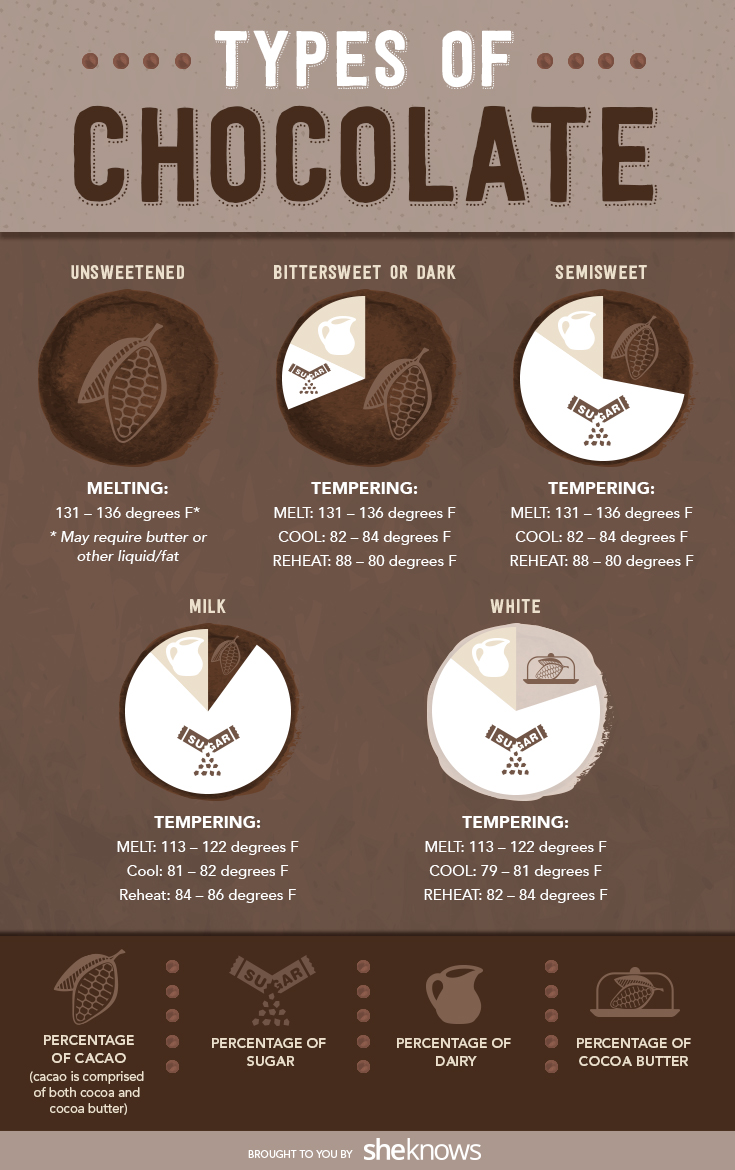 types of chocolate infographic