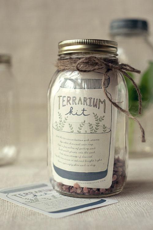 DIY terrarium kit instructions