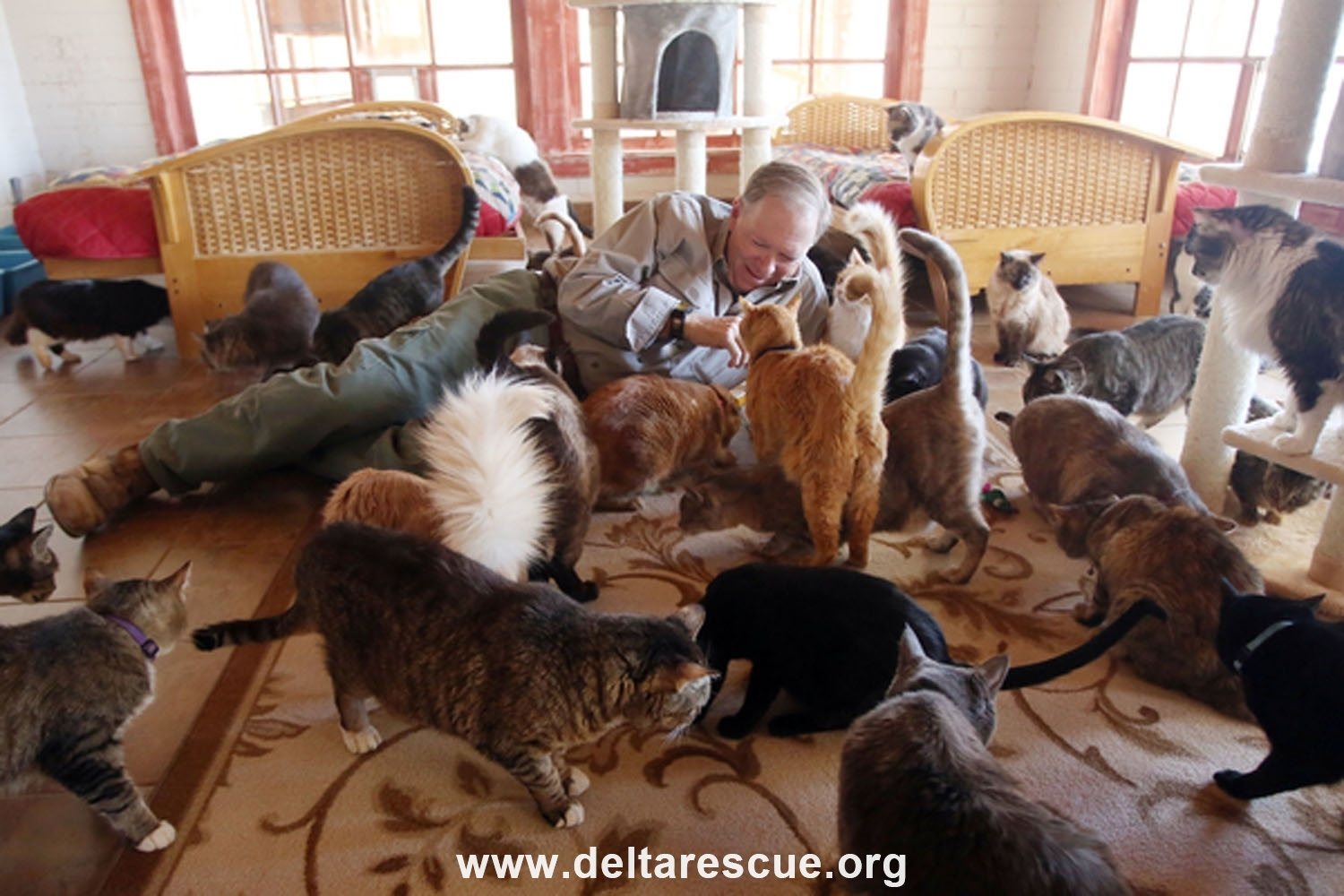 Delta Rescue founder Leo Grillo and rescued cats