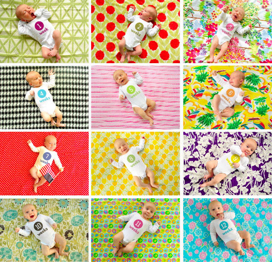fabric photo backdrop