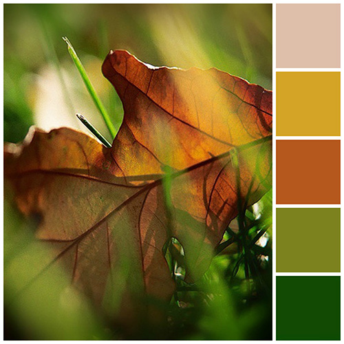 Fall Color schemes Bright side of fall green yellow and orange