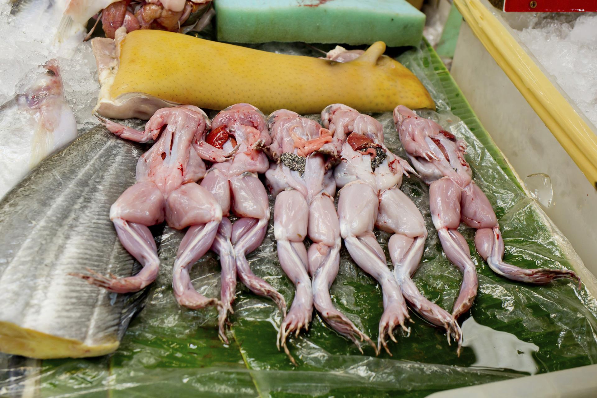 Frog sashimi and frog reproductive organ soup