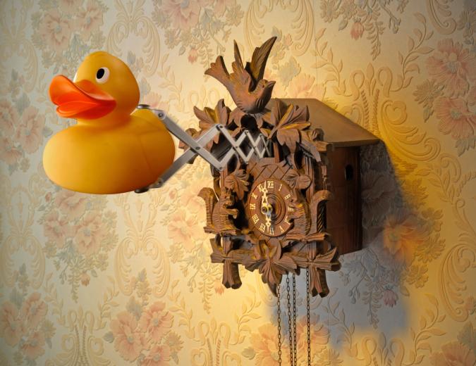 rubber duck cuckoo clock