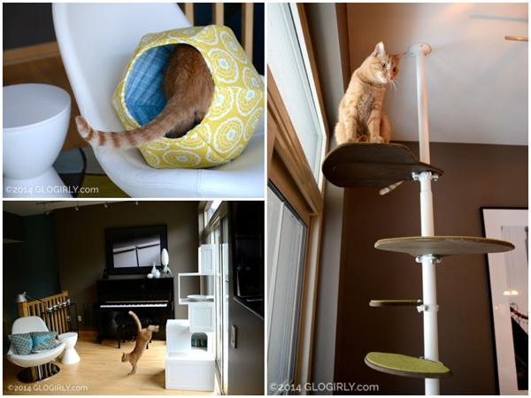 GloGirly cat collage