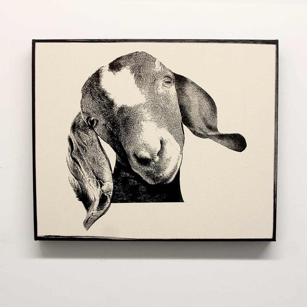 goat-on-canvas