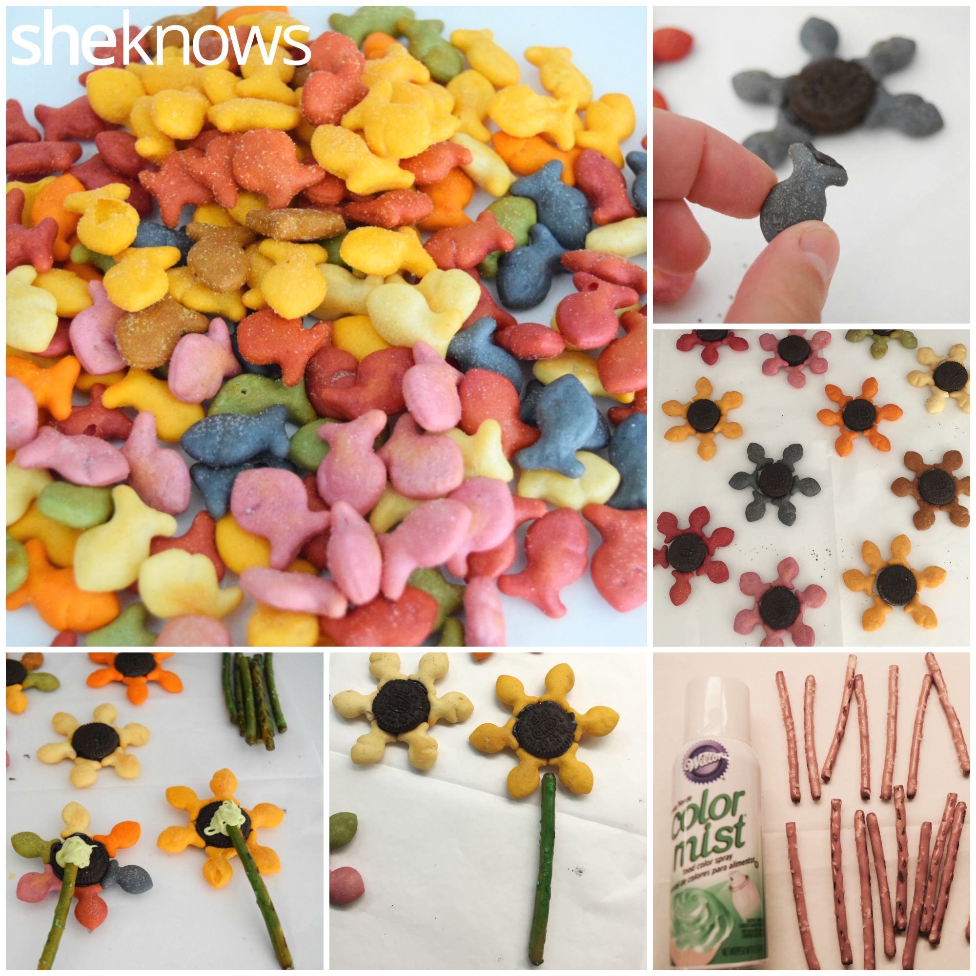 Goldfish Flowers How to