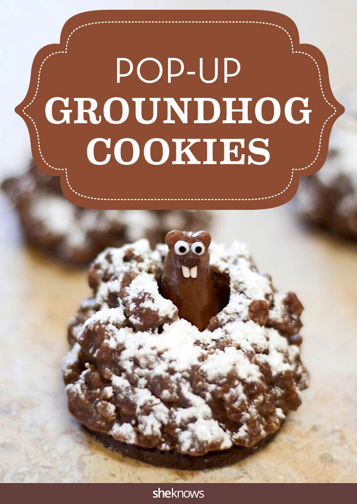 groundhog cookies