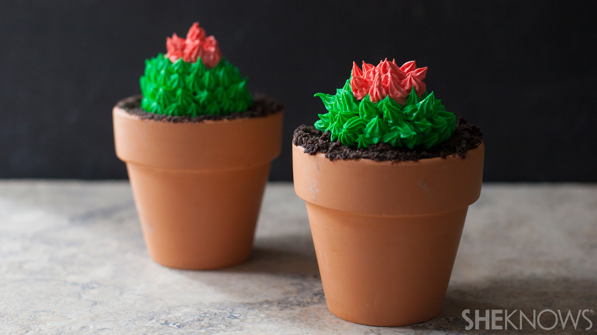 SheKnows & Cactus cupcakes in terra-cotta pots look like the real thing \u2013 SheKnows