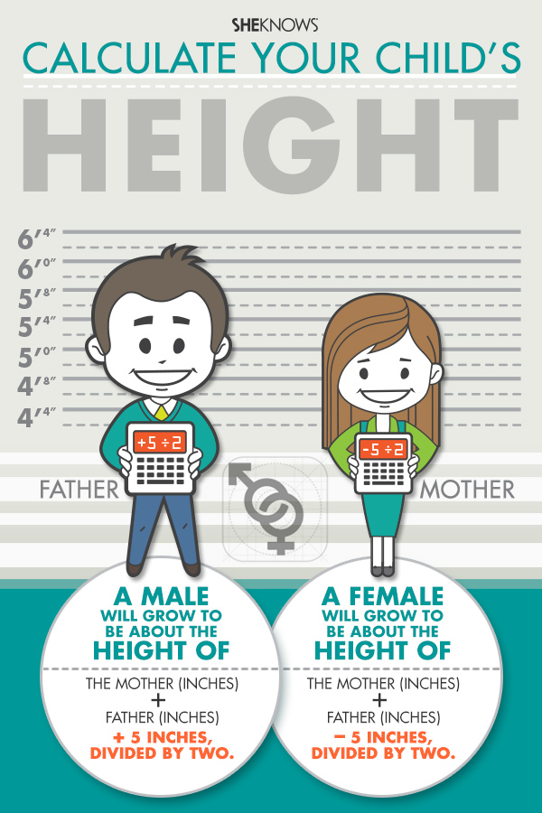 Child height chart | Sheknows.com