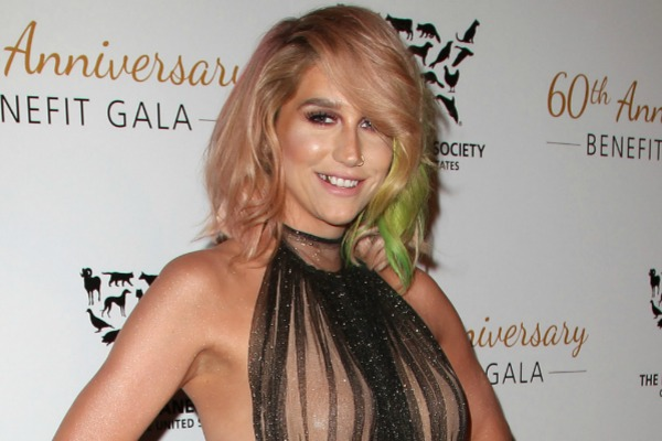 Kesha and celebrities with bright hairstyles