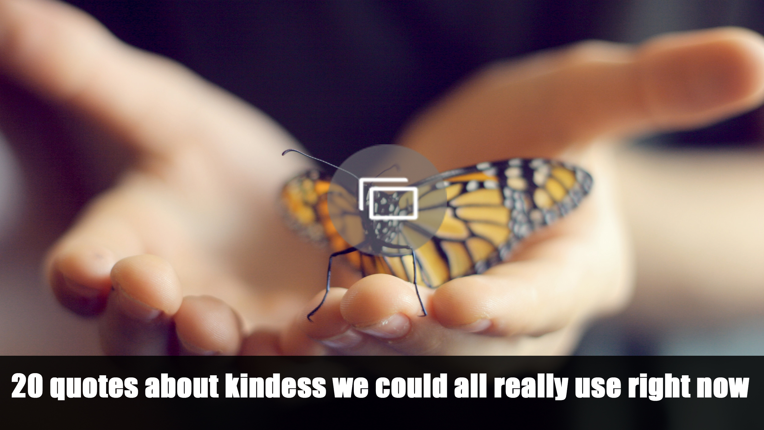 kindness quotes