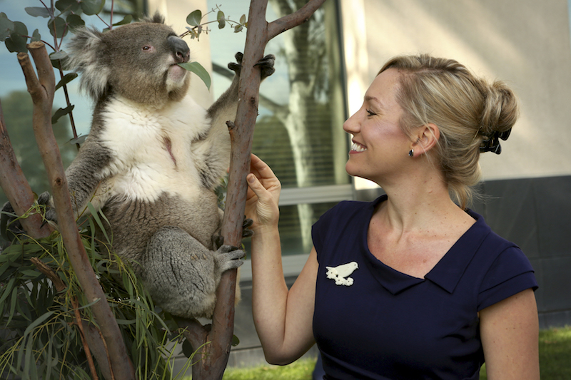 Larissa Waters Australian Greens senator and koala