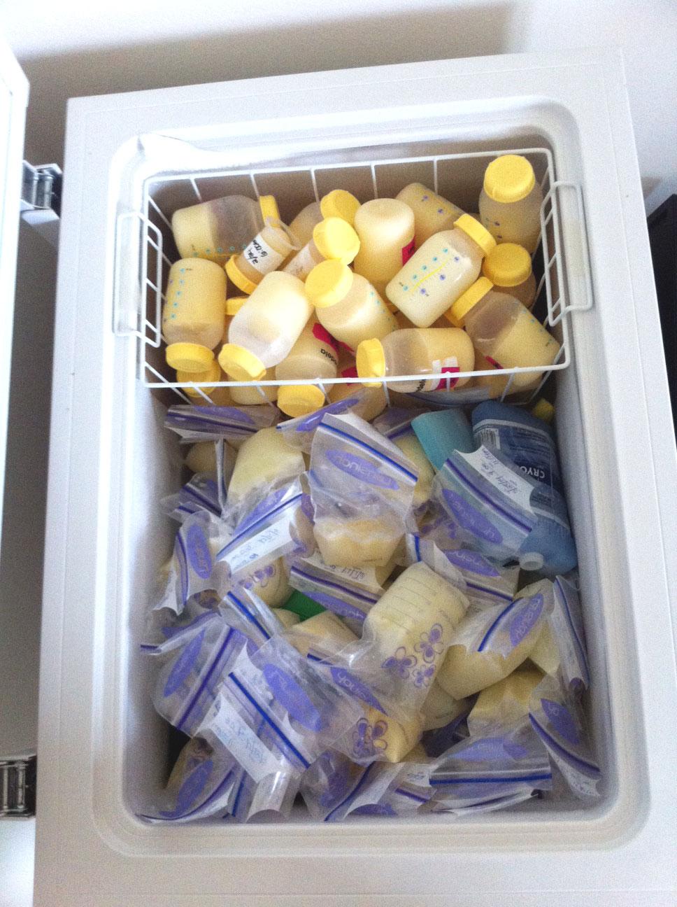 Mother's Milk Bank of New England: freezer