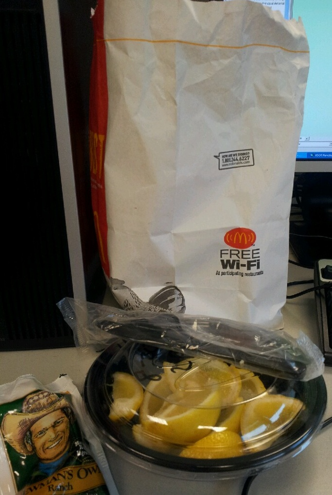 gross pictures of alleged McDonald's food 9