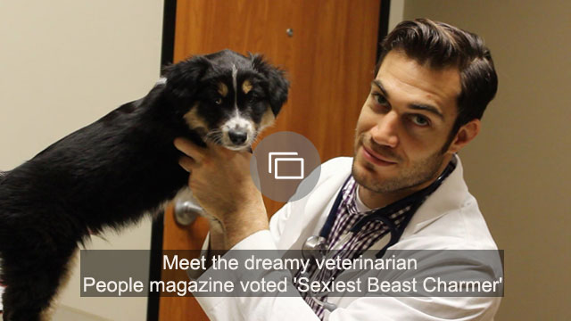 Meet the dreamy veterinarian People magazine voted 'Sexiest Beast Charmer'