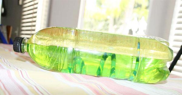 5 Soda Bottle Crafts For Kids Sheknows