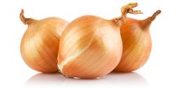 Onions | Sheknows.ca