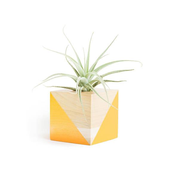 Best Planters on Etsy | Orange Air Plant Pot