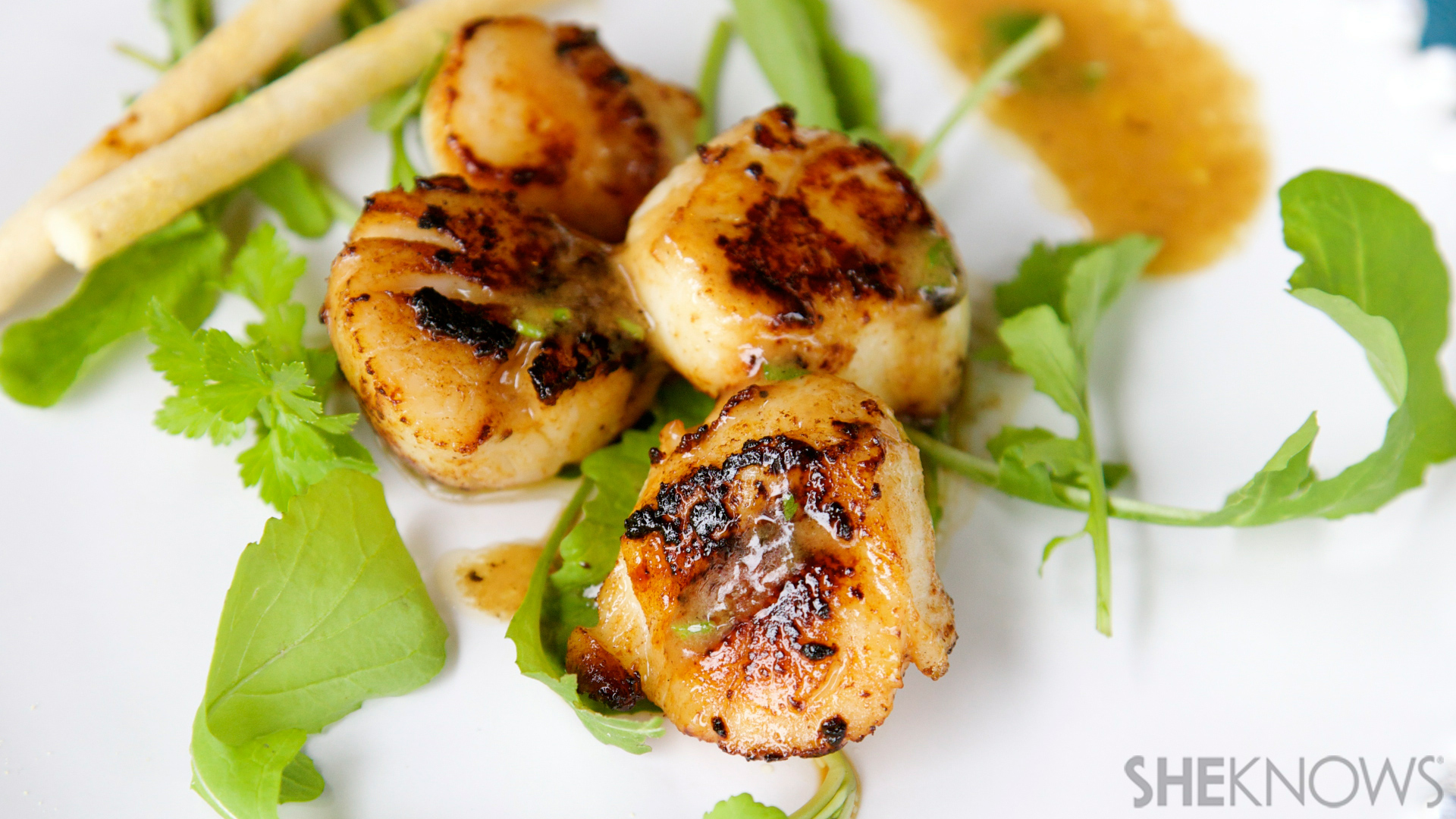 Pan seared scallops with champagne sauce recipe