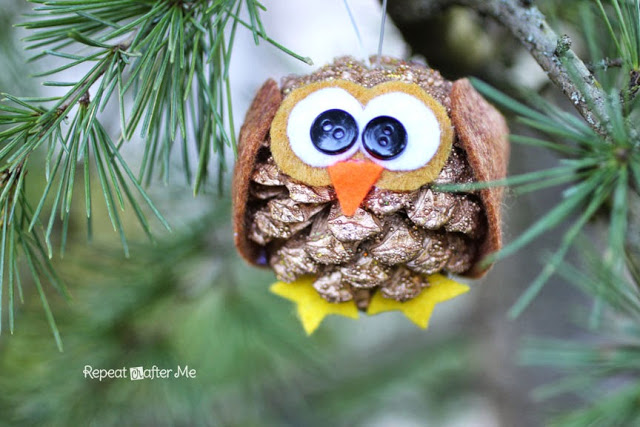 Pinecone owl | Sheknows.com