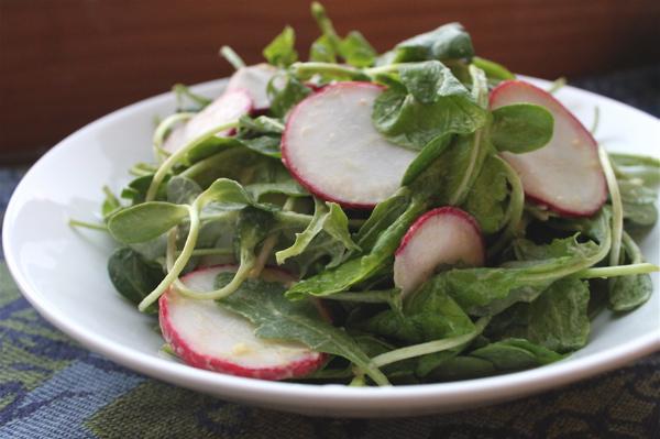 Arugula radish salad with avocado dressing