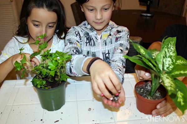 Rainy day activities - Kids gardening