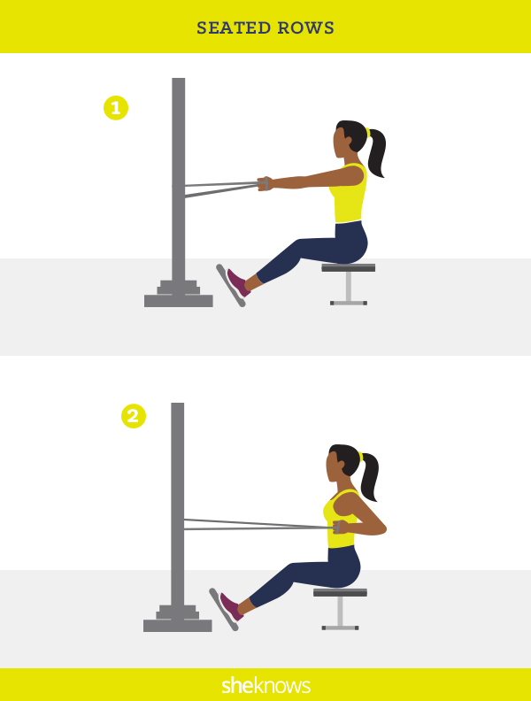 Seated Rows Illustration