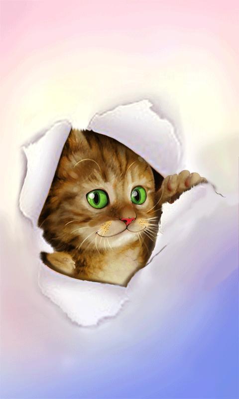 Silly cat wallpaper app